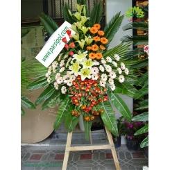 تاج گل تبریک رز قرمز کد DF09501