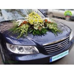ماشین عروس گل اورینتال کد CR113