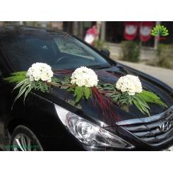ماشین عروس با طراحی گوی گل میخک کد CR036