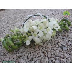 گل دست عروس کد DF01604