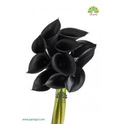 دسته گل شیپوری مشکی