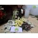 گل رومزاری کد DF00606
