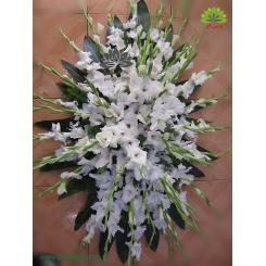 گل رومزاری کد DF01606