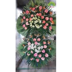 تاج گل تبریک و افتتاحیه استرلیتزیا کد DF52901