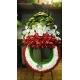 تاج گل افتتاحیه و تبریک سه رنگ ایران کد DF53701