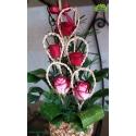 سبد گل ولنتاین رز عاشقانه کد DF00602