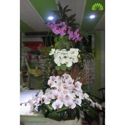 سبد گل لاکچری و لوکس ارکیده سه طبقه کد DF01602