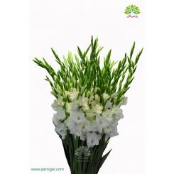 دسته گل گلایول سفید