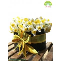 جعبه گل نرگس روز عشق کد DF05105