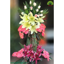 سبد گل طبیعی آنتوریوم صورتی کد DF09502