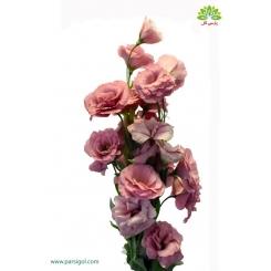 گل شاخه بریده لیسیانتوس صورتی