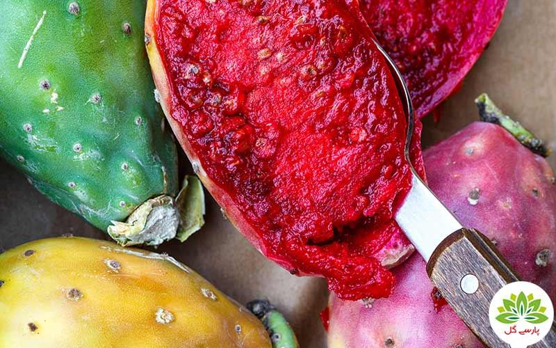 میوه کاکتوس و خواص بی نظیرش، فواید شگفت انگیز میوه کاکتوس، درمان انواع بیماری با میوه کاکتوس