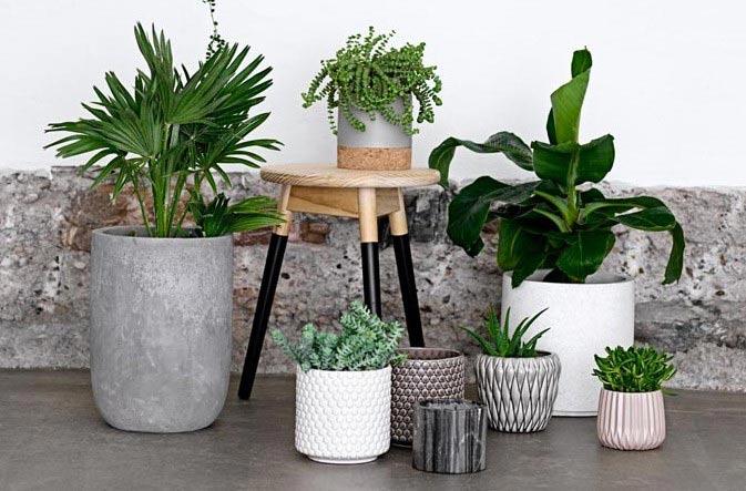 فواید استفاده از گل و گیاه، خواص گل و گیاه، مزایای استفاده از گل و گیاه و گلکاری و باغبانی در منزل