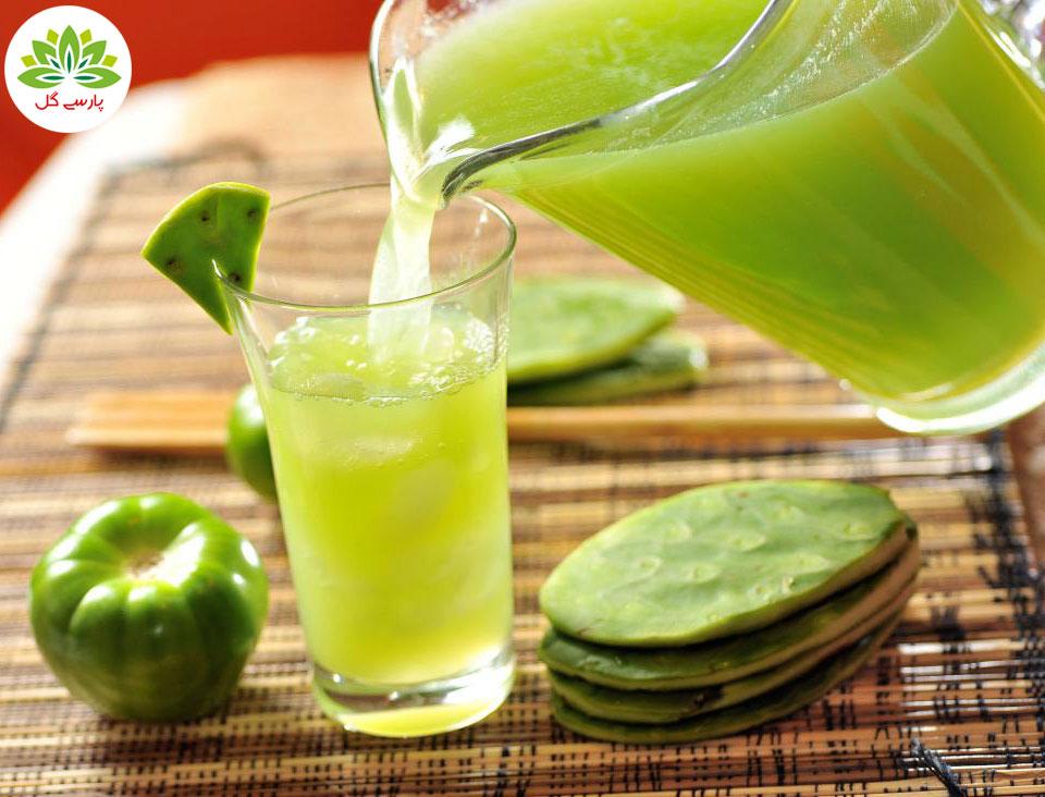 خواص میوه کاکتوس، فواید میوه کاکتوس، معرفی انواع کاکتوس خوراکی مفید